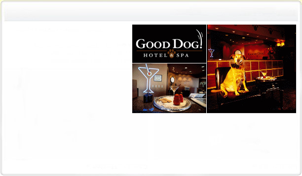 Good Dog Hotel & Spa